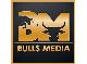 Bulls Media