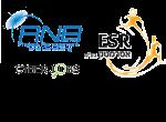 ESR - השמה להייטק