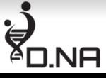 D.NA השמה לענף הרכב