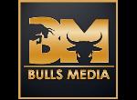 דרושים בBulls Media
