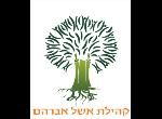 דרושים בקהילת אשל אברהם