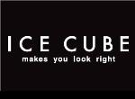 דרושים בIce Cube - אייס קיוב