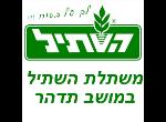 דרושים בהשתיל גידולי צמחים